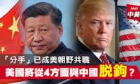 [Xi vs Trump] [底气] [西方与中国决裂] 中国自我发展成新超级大国