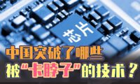 半导体芯片 (华为保卫战)